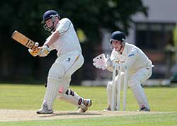 Senior Cricket - Batting